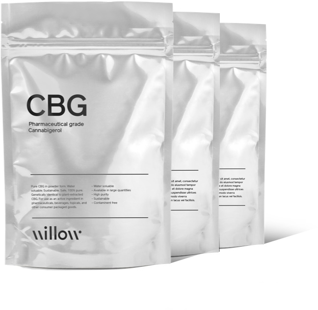 Front view of CBG consumer packaged goods bag with additional bags behind on white background.